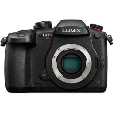 Panasonic Lumix DC-GH5S Body